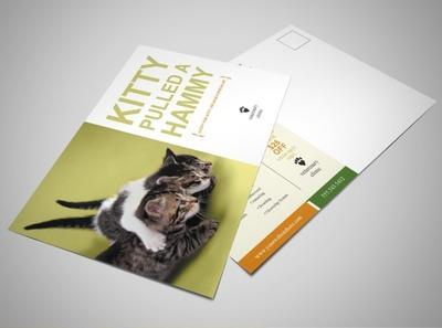 veterinary-service-postcard-template
