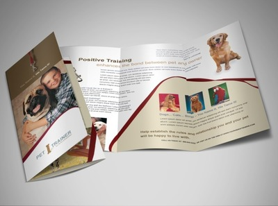 dog-training-and-daycare-brochure-template