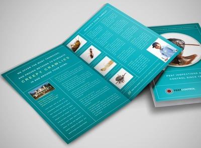 pest control services business flyer templates. Black Bedroom Furniture Sets. Home Design Ideas