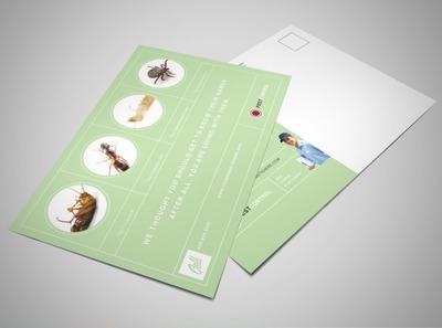 pest-and-bug-termination-services-postcard-template