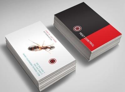 pest control services business postcard templates. Black Bedroom Furniture Sets. Home Design Ideas