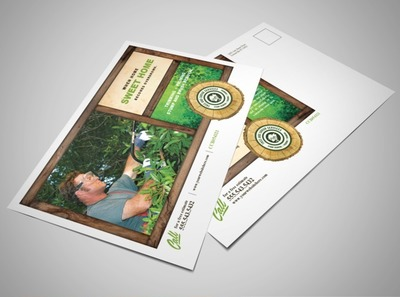 tree-planting-removal-services-postcard-template