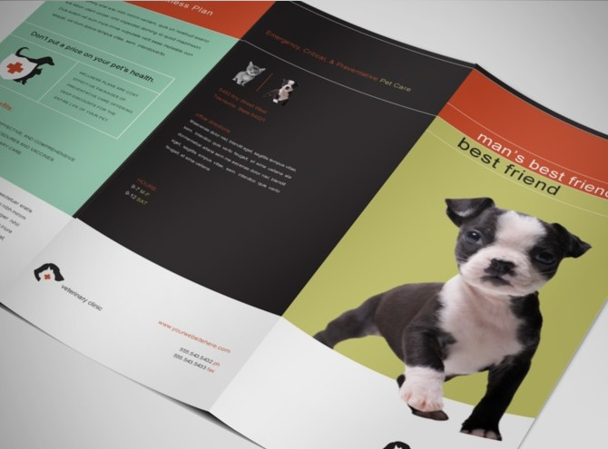 vet-animal-clinic-brochure-template