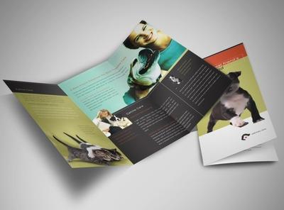 vet-animal-clinic-brochure-template