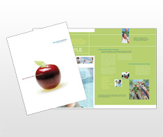 healthcare-systems-management-brochure-template