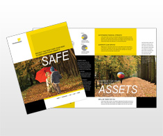 licensed-insurance-agent-brochure-template
