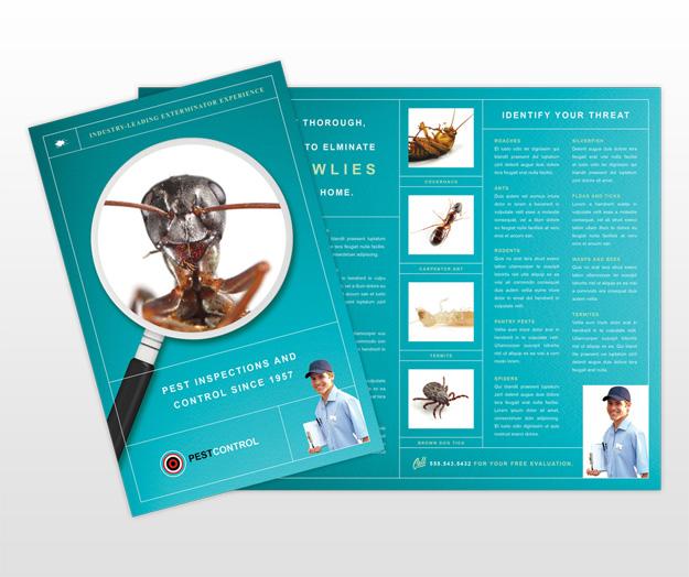 pest control services business brochure templates. Black Bedroom Furniture Sets. Home Design Ideas