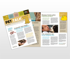 pet-adoption-agency-newsletter-template
