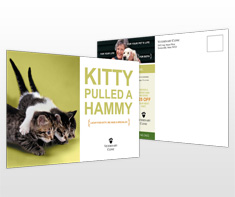 veterinary-service-postcard-template