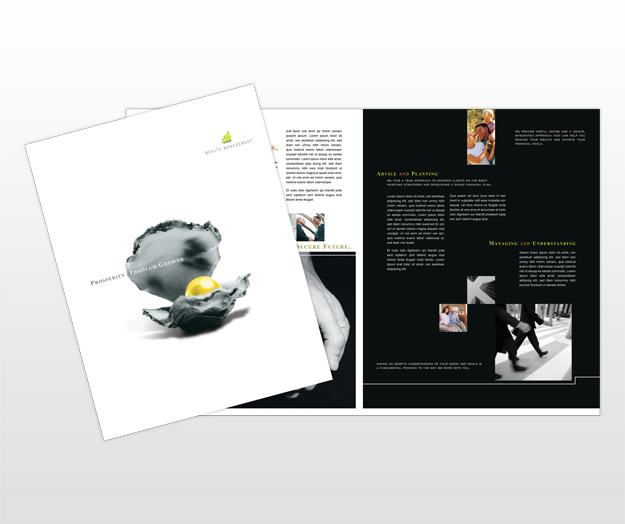 Wealth management services company brochure templates for Managed services brochure template