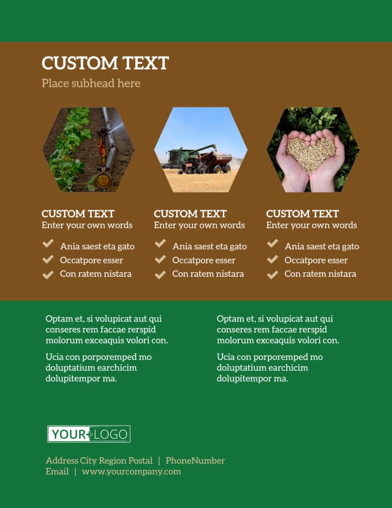 Agriculture Consultants Flyer Template Preview 3