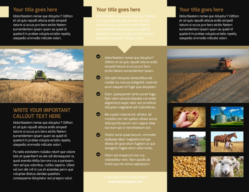 Farm Safety Awareness Brochure Template Preview 3