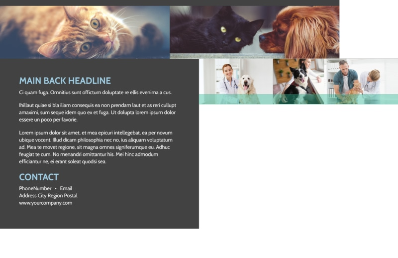 Veterinarian Postcard Template Preview 3