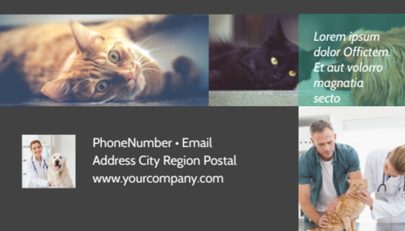 Veterinarian Business Card Template Preview 3