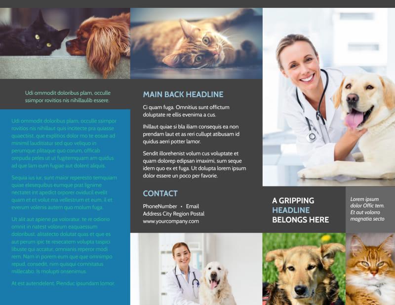 Veterinarian Brochure Template Preview 2