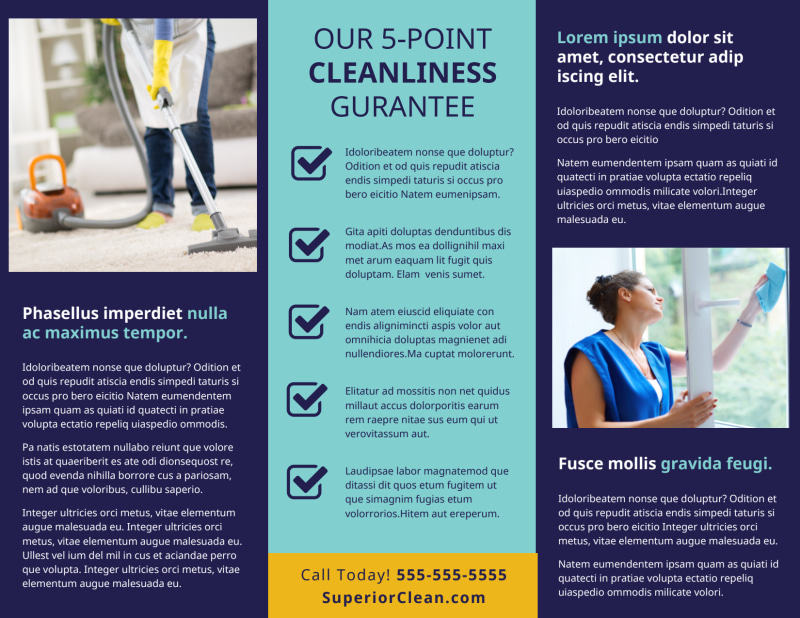 General Cleaning Services Brochure Template Preview 3