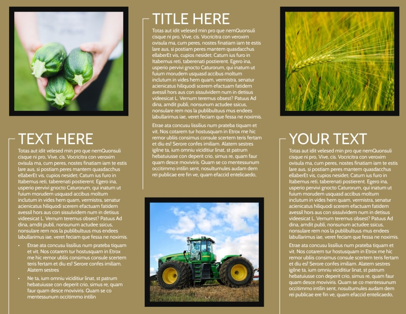 Farm Consultant Brochure Template Preview 3