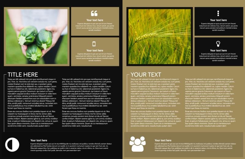 Farm Consultant Brochure Template Preview 3