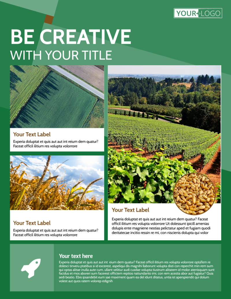Agriculture Farm Services Flyer Template Preview 2