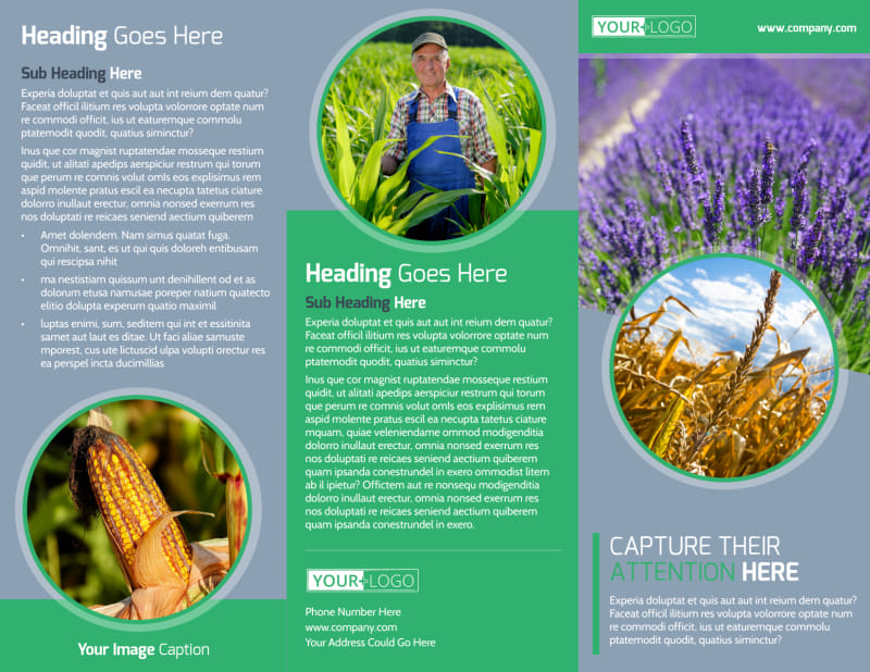 Crop Protection Service Brochure Template Preview 2