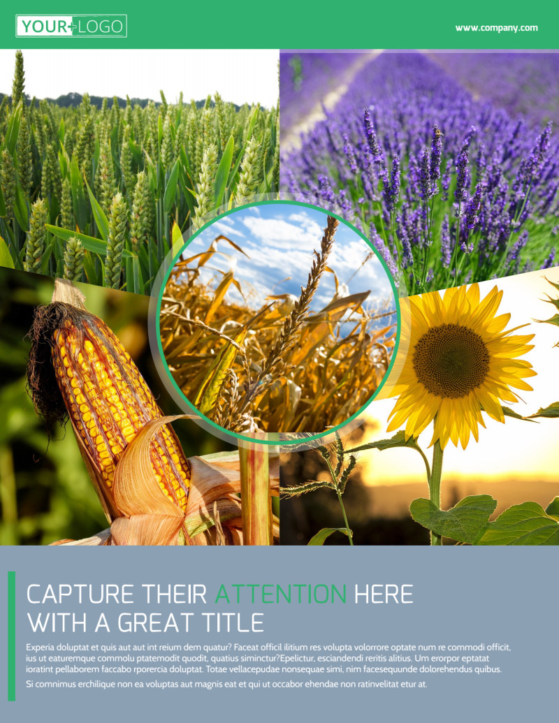 Crop Protection Service Flyer Template Preview 2