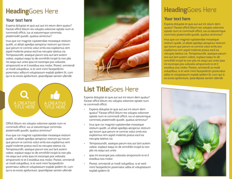 Agricultural Product Distributor Brochure Template Preview 3