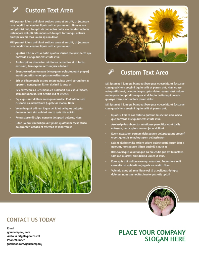 Agribusiness Consulting Flyer Template Preview 3