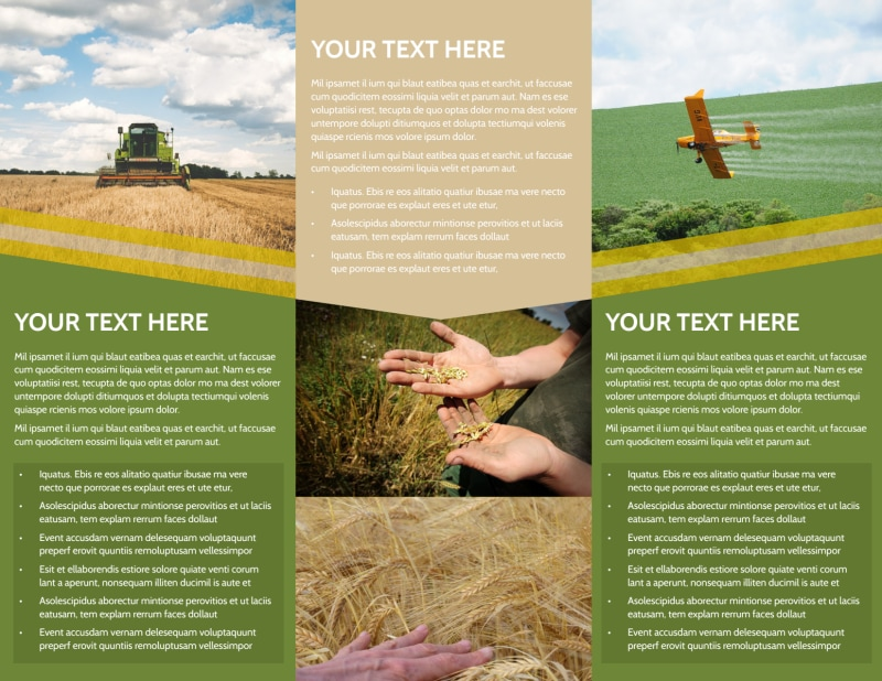 Crop Protection Company Brochure Template Preview 3