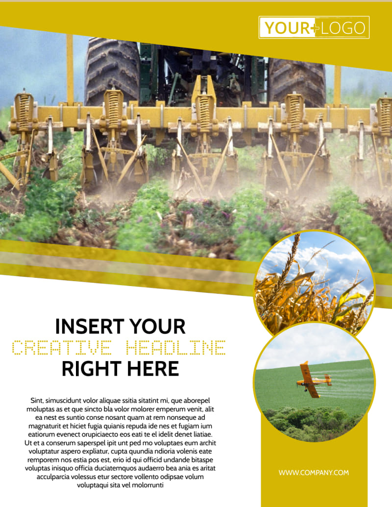 Crop Protection Company Flyer Template Preview 2