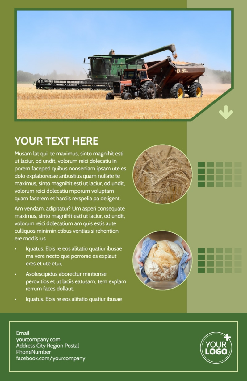 Agricultural Marketing Firm Flyer Template Preview 3