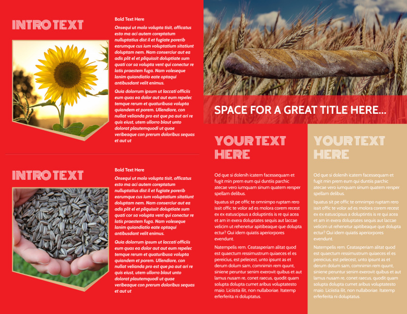 Agricultural Farm Consultants Brochure Template Preview 3