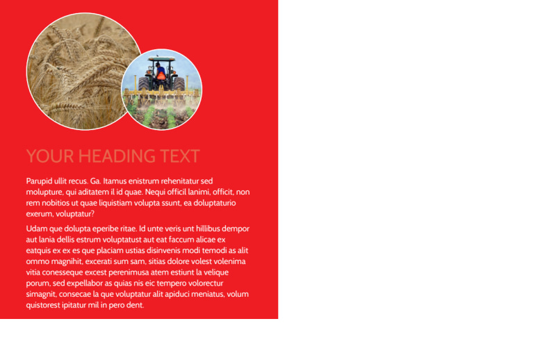 Agricultural Farm Consultants Postcard Template Preview 3