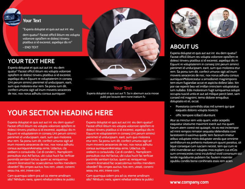 Auto Owners Insurance Brochure Template Preview 3