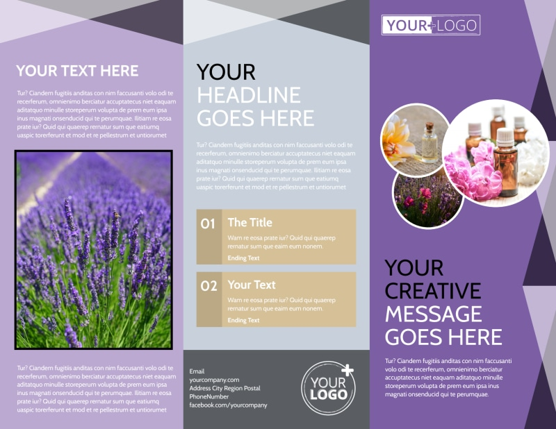 Basic Brochure Template from cdn.mycreativeshop.com