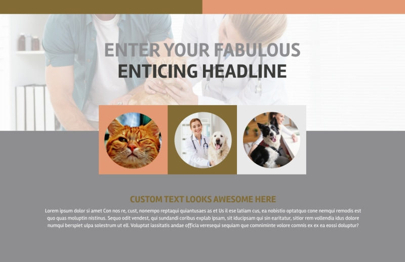 Valley Veterinary Clinic Postcard Template Preview 2