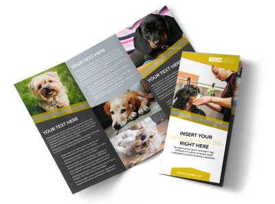 Dog Wash Service Tri-Fold Brochure Template