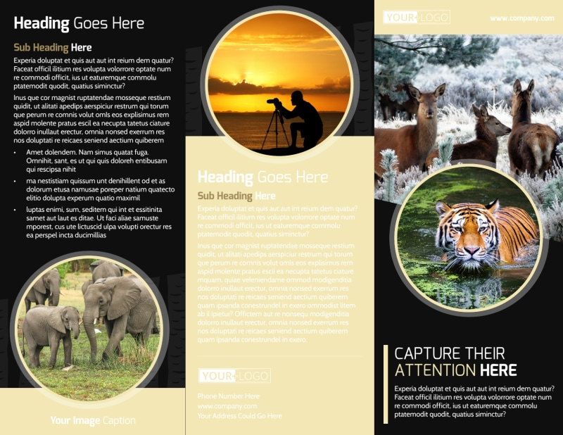 Wildlife Photography Brochure Template Preview 2