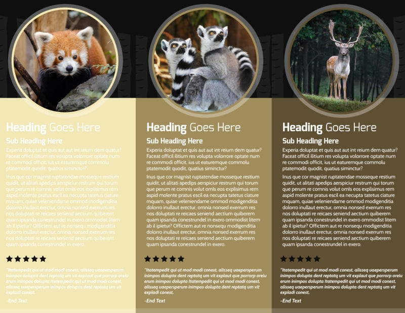 Wildlife Photography Brochure Template Preview 3