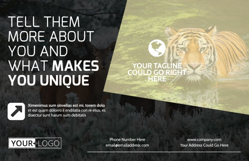 Wildlife Photography Postcard Template Preview 2