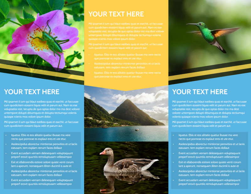 Nature Photography Brochure Template Preview 3