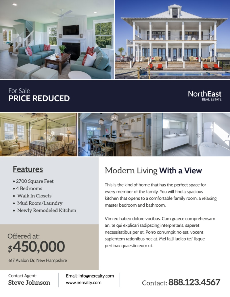 Modern Real Estate Price Reduced Flyer Template Preview 2