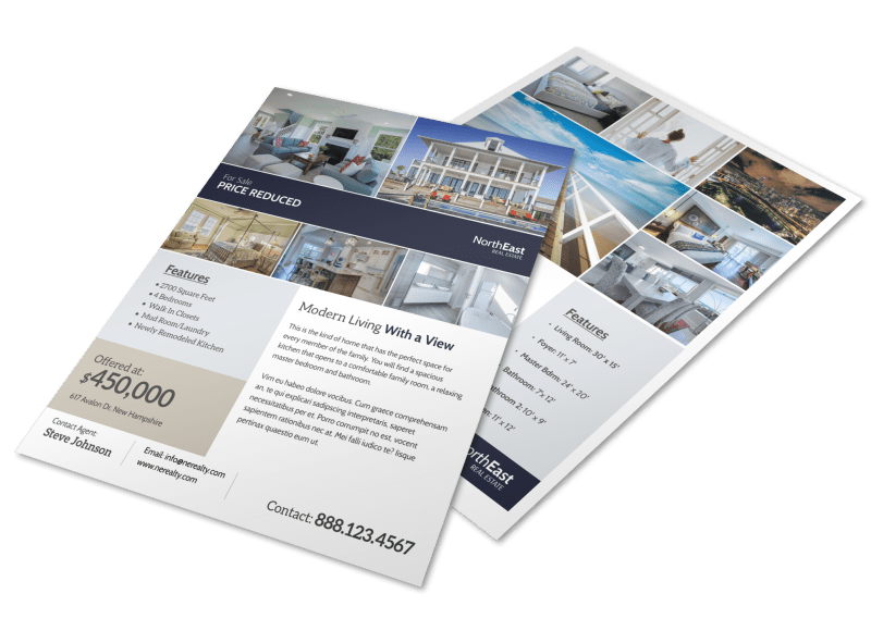 Modern Real Estate Price Reduced Flyer Template Preview 1