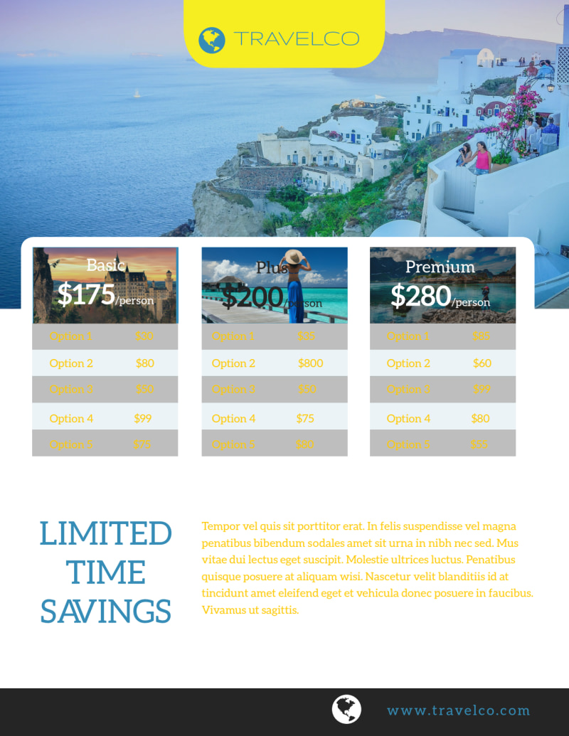 Plan Your Next Adventure Travel Agency Flyer Template Preview 3