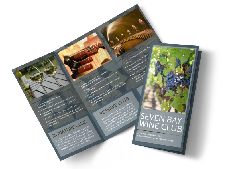 wine brochure template free - seven bay wine club tri fold brochure template