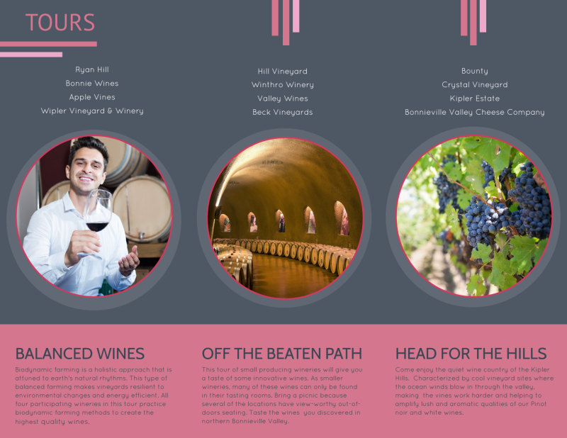Valley Wine Tour Tri-Fold Brochure Template Preview 3