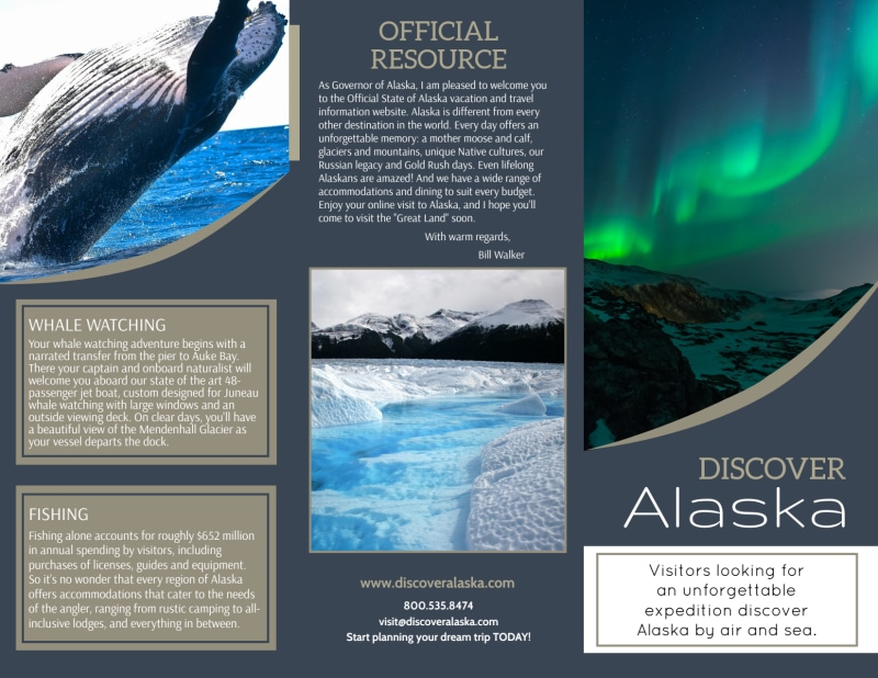 Travel Alaska Tri-Fold Brochure Template Preview 2