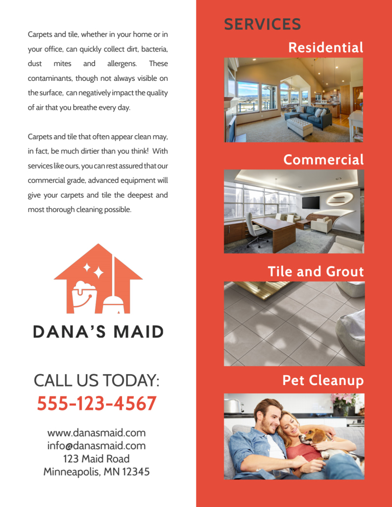 Dana Carpet Cleaning Flyer Template Preview 3