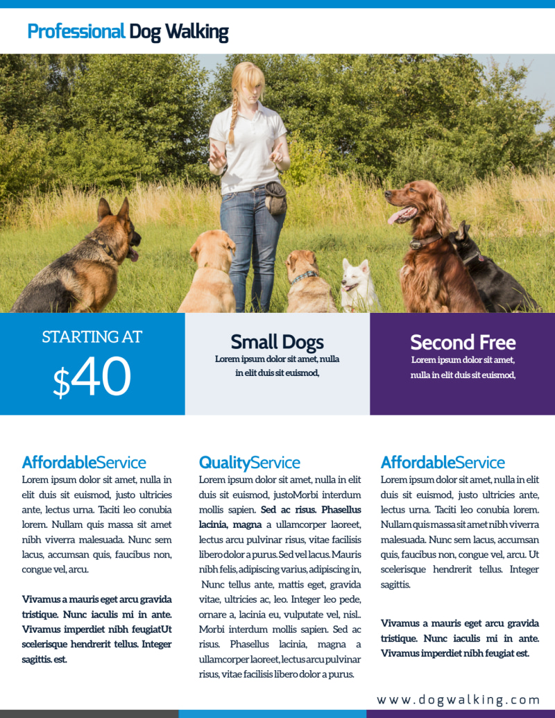 Pro Dog Walking Flyer Template Preview 3