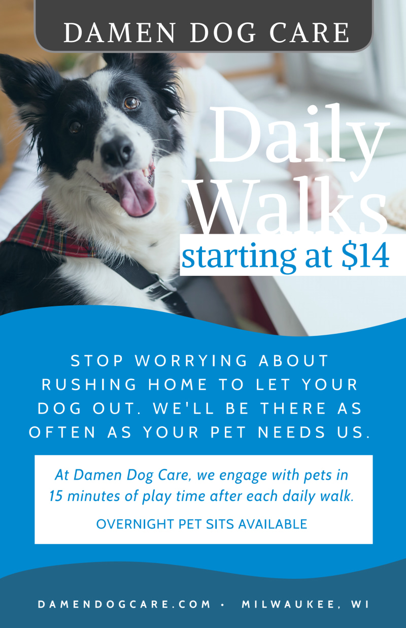 Daily Dog Walking Poster Template Preview 2
