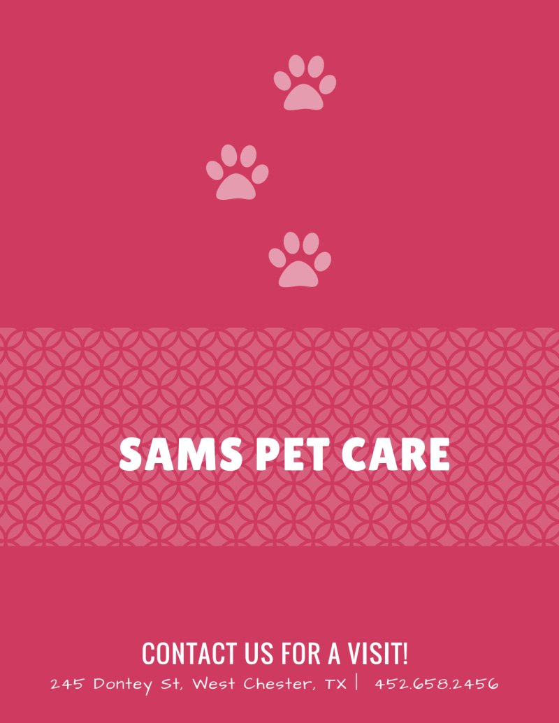 Pet Care Flyer Template Preview 3